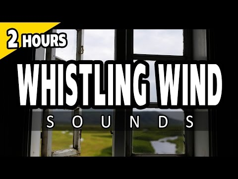 🎧 WIND SOUNDS - Wind Whistling through a Window - SLEEP SOUNDS for Relaxing, Ambience, White Noise
