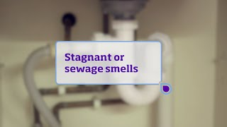 Stagnant or sewage tastes and smells in tap water