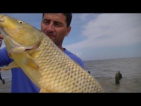 TV Nº307 19-01-2018 Pesca en los malecones de Berisso, PARTE 1