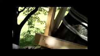 Best Treehouse 2 - 700 + Square Feet, 8 Levels, 50 Foot Rope Bridge, 120 Foot Zip Line