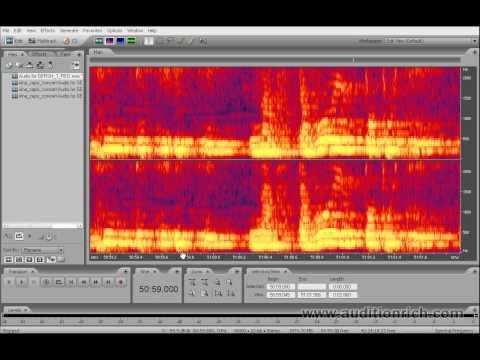 Удаление ненужного звука из записи в Adobe Audition
