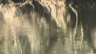 В Греции зимой.avi(Отрывок из фильма. Рыба и снасти / Риби и такъми. В Греции зимой., 2011-04-26T21:28:22.000Z)