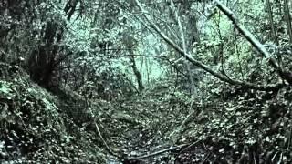 Soldados de Salamina - Fusilamiento y Escape de Mazas
