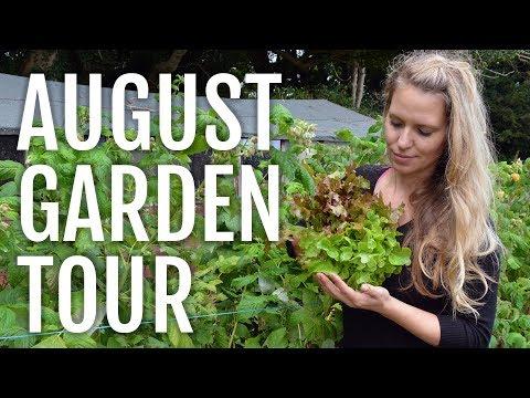 August Allotment Garden Tour