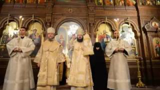 Episcopia de Ungheni și Nisporeni - Îgerul a strigat!...