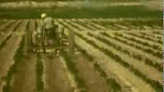 From the Vault - Farming in Imperial Valley