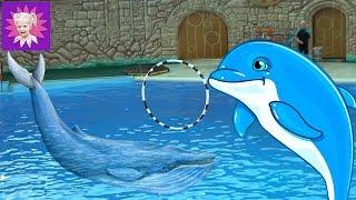 ОТДЫХ в СОЧИ # 4 Идем в ДЕЛЬФИНАРИЙ парк на шоу дельфинов первый раз видео от Family Box от Миланы
