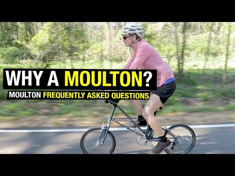 Moulton vs. Brompton?