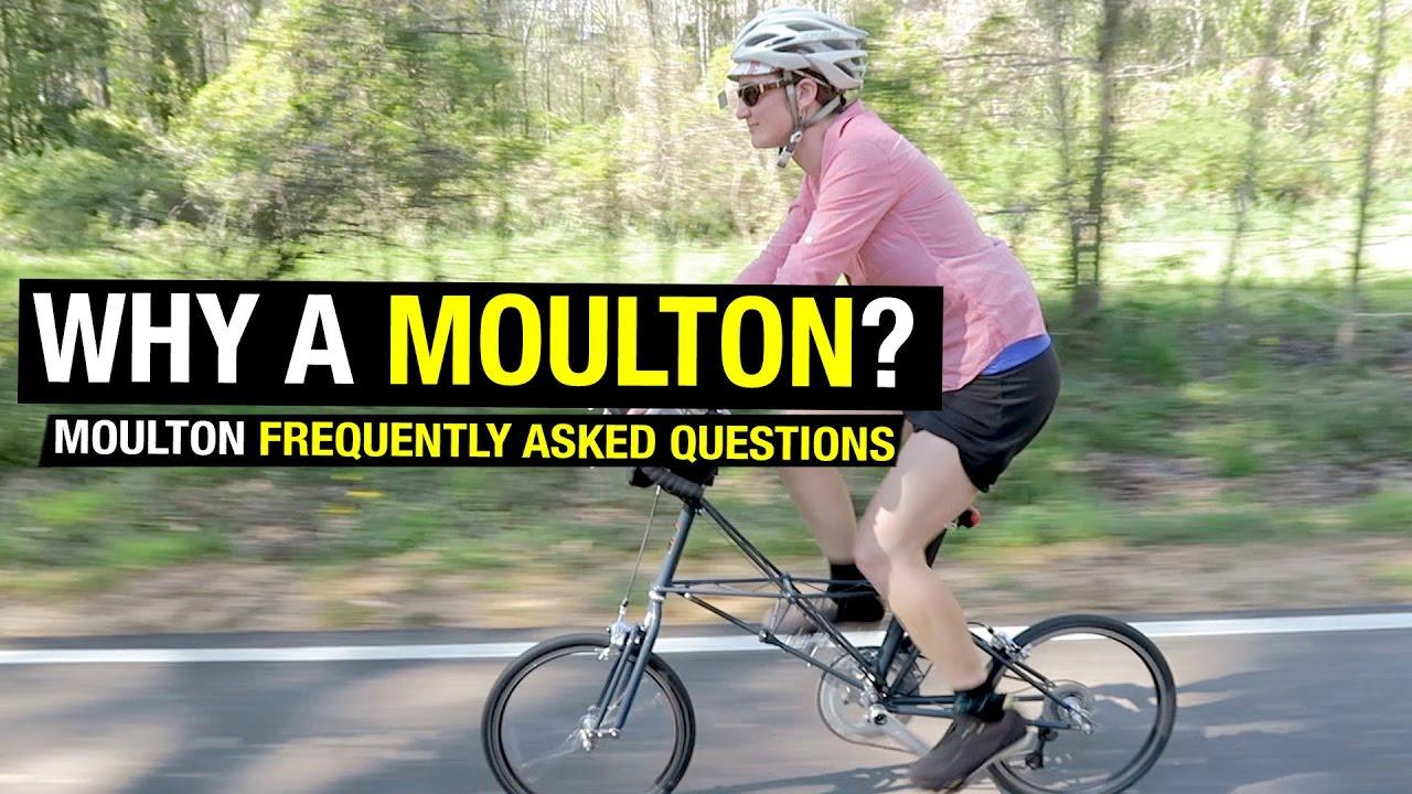 Mouton bike