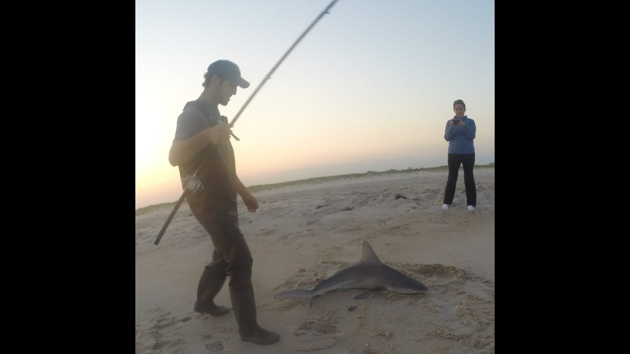 Awesome shark surf fishing video jones beach ny youtube for Surf fishing for sharks