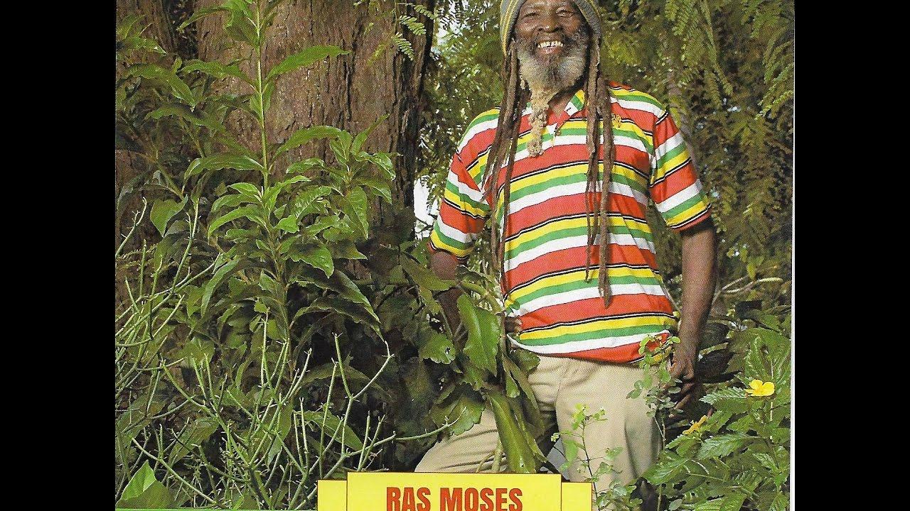 Ras Moses - Medicinal Plants of Barbados
