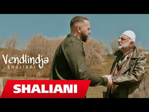 Shaliani - Vendlindja (Official Video 4K)