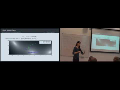 Maren Mahsereci: Robust Nonlinear Optimization