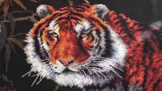 """""""Тигр"""" от Dimensions.Три схемы в одной работе. сп """"Пушистики""""."""