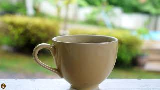Coffee Break Relaxing Jazz Music l Instrumental Jazz l Beautiful Relaxing Music #CV009