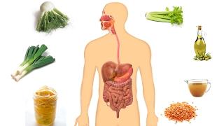 Best Colon Cleanse And Detox Soup Recipe | Natural Colon Cleanse
