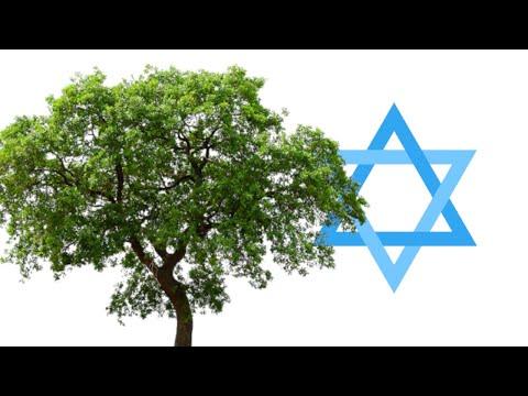 The Islamic Holocaust (The Gharqad Tree)