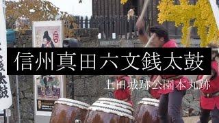 紅葉見ようと、長野県の上田市にある上田城に行ってきました。紅葉と太...