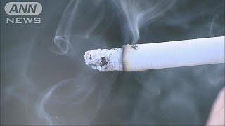 受動喫煙で子ども6万人が犠牲に WHO「規制不十分」(19/05/30)