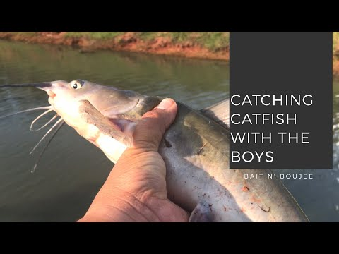 Catching Catfish In Oklahoma Neighborhood Ponds