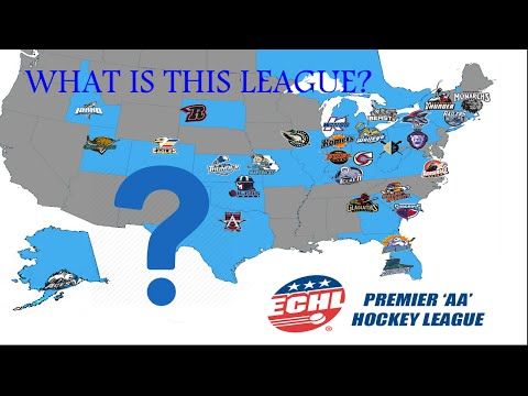 What is the ECHL? (NHL 17 Gameplay)