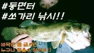 [안글러TV] 겨울 산청 경호강 동면터 쏘가리 루어 낚…