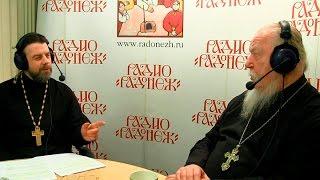 Радио «Радонеж». Протоиерей Димитрий Смирнов. Видеозапись прямого эфира от 2017.01.28