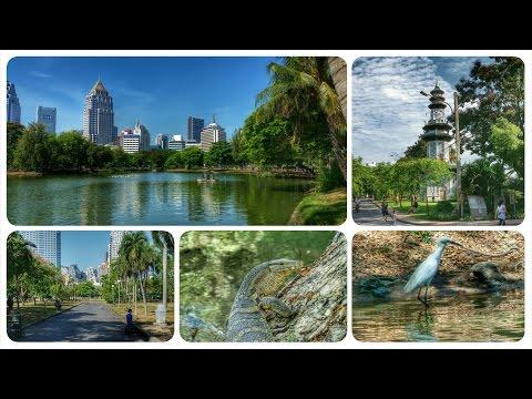 Lumpini Park Tour