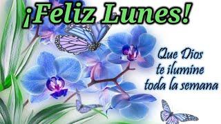 💌Feliz Lunes e inicio de semana, mensaje especial para ti lleno de imagenes bonitas de buenos días