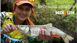 LenKo Mixfish и весенний голавль.