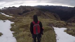 Hunting Chamois | Marlborough High Country, New Zealand