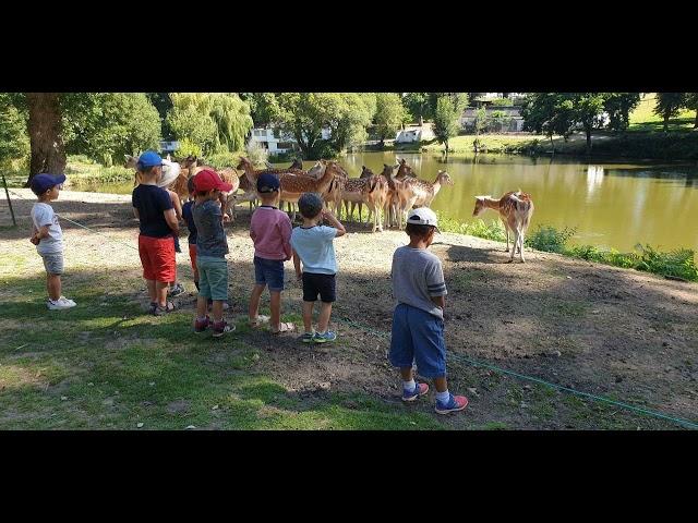 Le parc animalier du Quinquis à Clohars-Carnoët [Août 2020]
