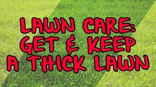 Lawn Care: Get & Keep a Thick Lawn