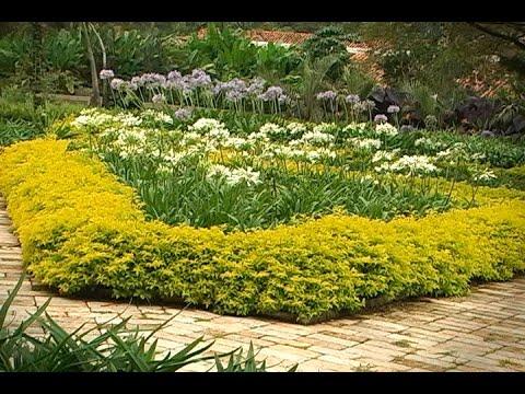 mantenimiento de jardines y zonas verdes residenciales