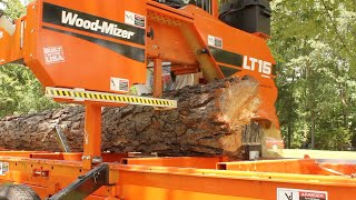Turning a Pine Tree Into 4x4 Timbers