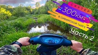 видео: 300км на скутере по таёжным лесам - Часть 2