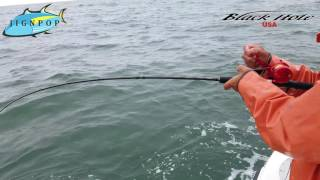 Seabass jigging with Black Hole USA Challenger Bank 691UL Rod