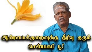 Health Benefits of Shenbaga Flower in Tamil
