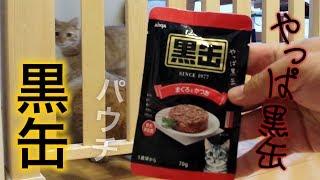 黒缶 パウチ まぐろとかつお 猫用ウェットご飯を購入して与えてみた!DHA EPA 鉄分 タウリン ビタミンEなどの栄養素 【Aixia アイシア】 thumbnail