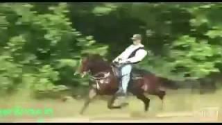Старая казахская народная песня