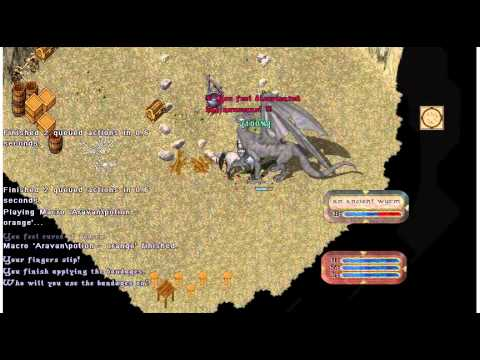 Ultima Online: Warrior Soloing an Ancient Wyrm