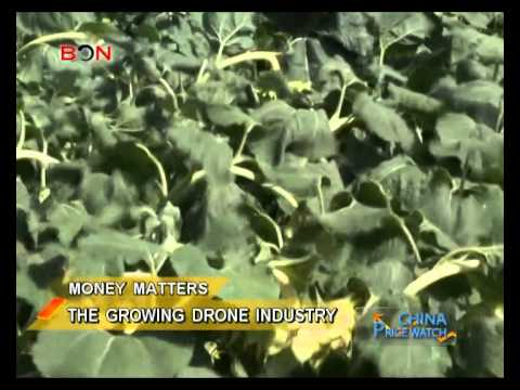 The growing drone industry - China Price Watch - November 05, 2014 - BONTV China