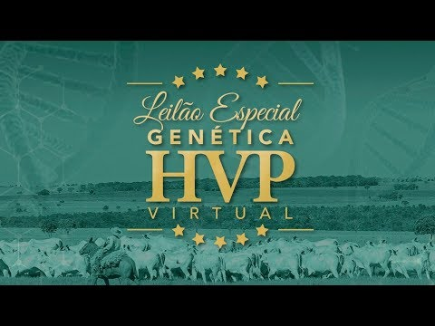 Lote 25   Hindra FIV HVP   HVP 3355   Held FIV HVP   HVP 3106 Copy
