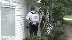 General Pest Control | Pest Management | Willoughby, OH