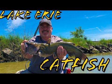 HOW TO CATFISH- LAKE ERIE (fish Every Cast)