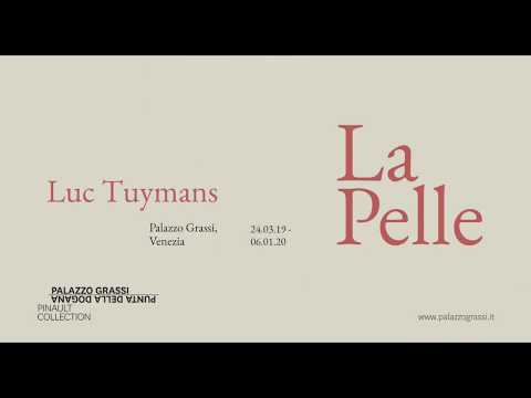Teaser La Pelle Luc Tuymans At Palazzo Grassi 2019 Youtube