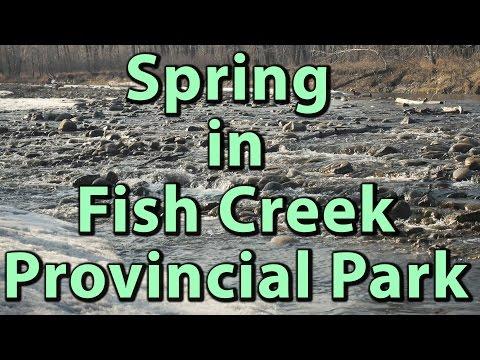 Spring In Fish Creek Provincial Park, Calgary (4K) | Journey Alberta