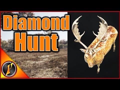 Hunting for Hirschfelden Diamonds | Call of the Wild