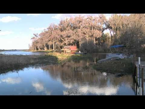 Lone Cabbage Fish Camp In Cocoa Florida Chasing Some