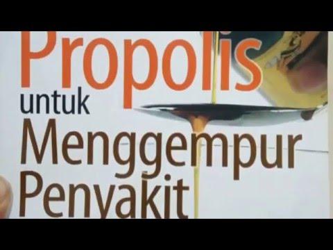Dahsyatnya Manfaat Propolis Untuk Menggempur Penyakit